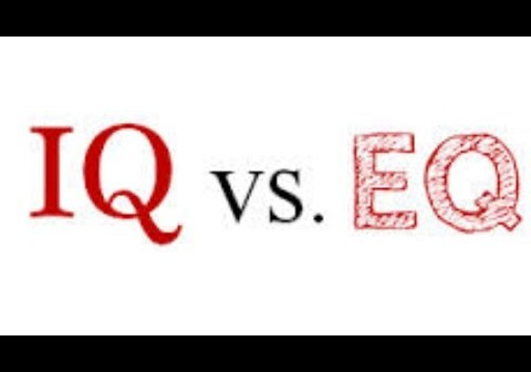 img_340_iq-vs-emotional-quotient-fact-or-fad.jpg
