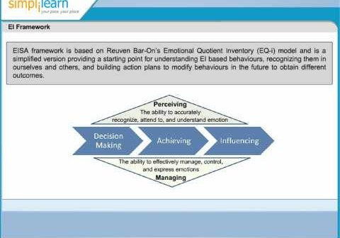 img_368_reuven-bar-on-s-emotional-quotient-inventory-ei-framework-agile-pmi-acp-certification-training.jpg